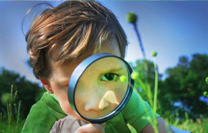Quan sát và tập trung