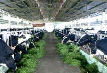 Đối với lợi ích nông dân
