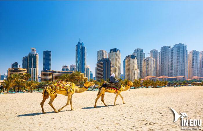 Định cư UAE